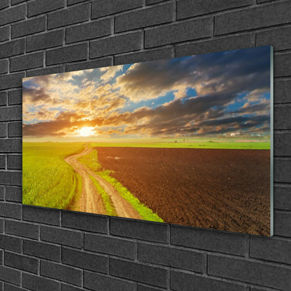 Glass print Wall art 100x50 Image Picture Acker Footpath Landscape