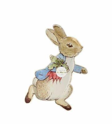12 placas de papel de Peter Rabbit Baby Shower 1st Fiesta De Cumpleaños Meri Meri-Grande
