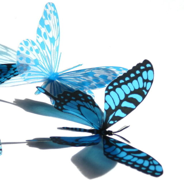 50 Pack Butterflies - Blue - 5 to 6 cm - Topper, Weddings, Crafts, Cards,
