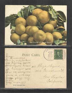 1908-ONE-CLUSTER-OF-GRAPEFRUIT-CALIFORNIA-POSTCARD