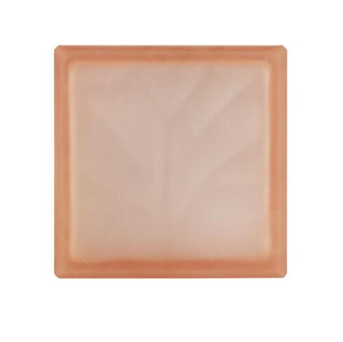 5 pièce Briques de Verre Nuage rose pâle 2 face satinée 19x19x8cm