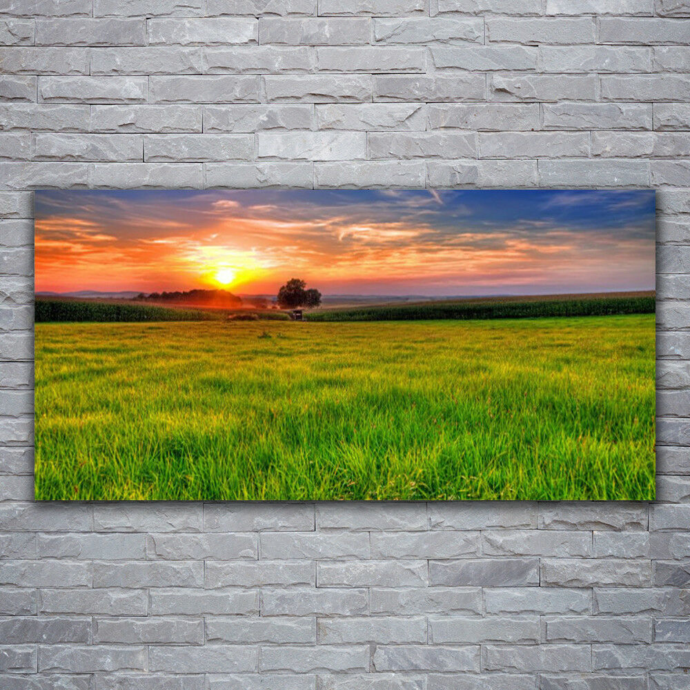 Wandbilder Glasbilder Druck auf Glas 120x60 Wiese Sonne Natur