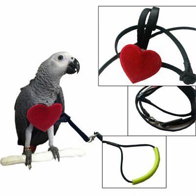 Parrot harness bird leash adjustable soft lightfashion antibite multicoloreODUS