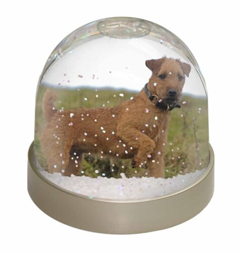 Lakeland Terrier Dog Photo Snow Globe Waterball Stocking Filler Gift, ADLT1GL