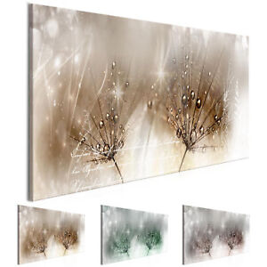 wandbilder xxl pusteblume grau gr n braun leinwand bild wohnzimmer b c 0201 b b ebay. Black Bedroom Furniture Sets. Home Design Ideas