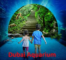 Dubai Aquarium - Entertainer Dubai'18 voucher Discover scuba diving package.