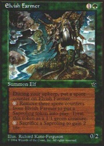 English Elvish Farmer x1 MTG Magic Fallen Empires Moderate Play