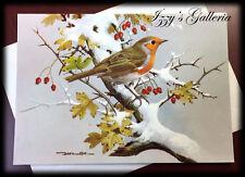 Vintage Marcel Schurman Co. Winter Robin Basil Ede Christmas Greetings Card