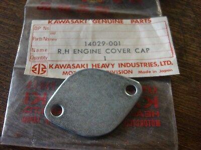 KAWASAKI F81M//KD175//KX125//G31M//KD80 OIL PUMP HOLE PLUG NOS!