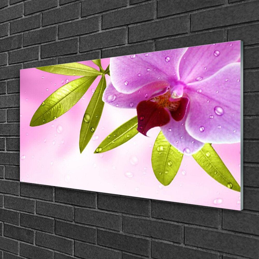 Image sur verre Tableau Impression 100x50 Floral Feuilles Fleurs