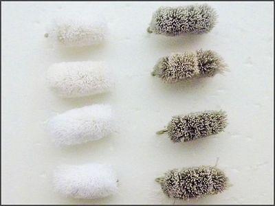 Pêche à la Mouche Bread Paquet de 12 Mélangé Size 8-12 pour Truite Carpe Mulets