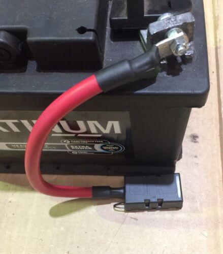 Cosworth alternador a la batería protección Fusebox /& 100A Fusible