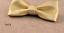 Cuir-Noeud-Papillon-Homme-Femme-Qualite-Marron-Noir-Blanc-Rouge-Bleu-Argent-Dore miniature 8