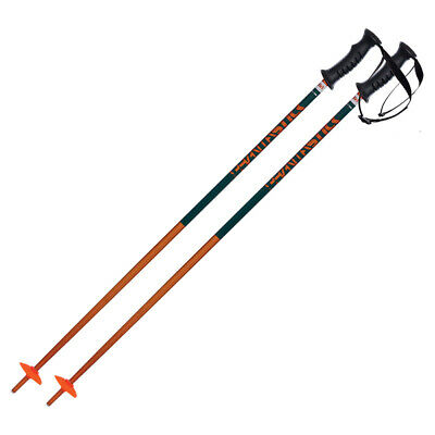 Volkl Phantastick Junior Ski Poles16662