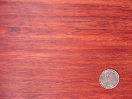"boards lumber 1//8 or 1//4 surface 4 sides 12/"" Bubinga"