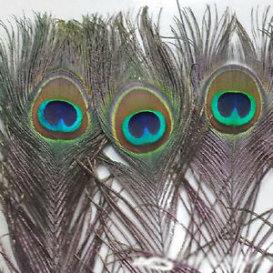 10Pcs-Peacock-Feathers-Tail-Feather-for-DIY-Craft-Mask-Jewellery-Making-Handmade