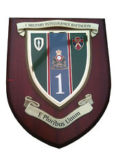 1 st Military Intelligence Corps Shield Wall Plaque