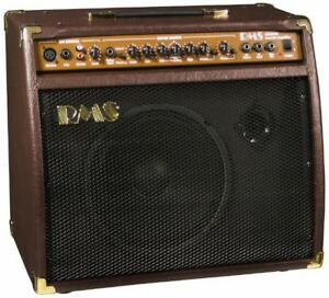 Rms Ac 40 40 Watt Acoustic Guitar Amplifier Amp With Mic Microphone