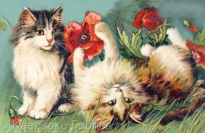 Cats & Red Poppies Reproduction Quilt Block Multi Sizes FrEE ShiP WoRld WiDE