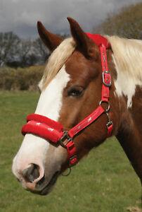 Rhinegold-Logo-Headcollar-fleece-trim-Shetland-pony-cob-full-fully-adjustable