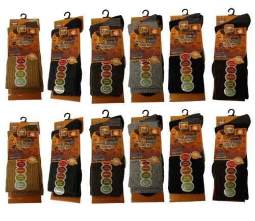 12 NUOVI Pantaloncini Uomo Spessore 2.4 TOG calore MAX Lana D/'Agnello Inverno Termico Calzini Pacco Da 6