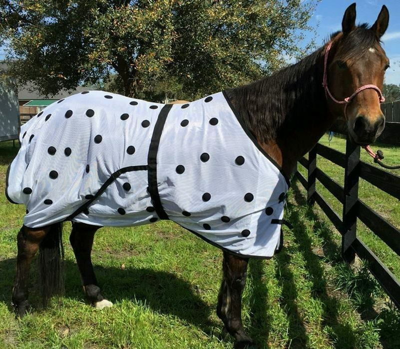 WESTERN OR ENGLISH SADDLE HORSE MAGNETIC THERAPY BLANKET SHEET W  MAGNETS