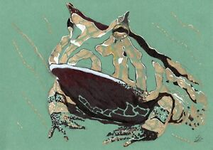 Bullfrog-Stylization-original-animal-drawing-pen-markers-painting-frog-toad-art