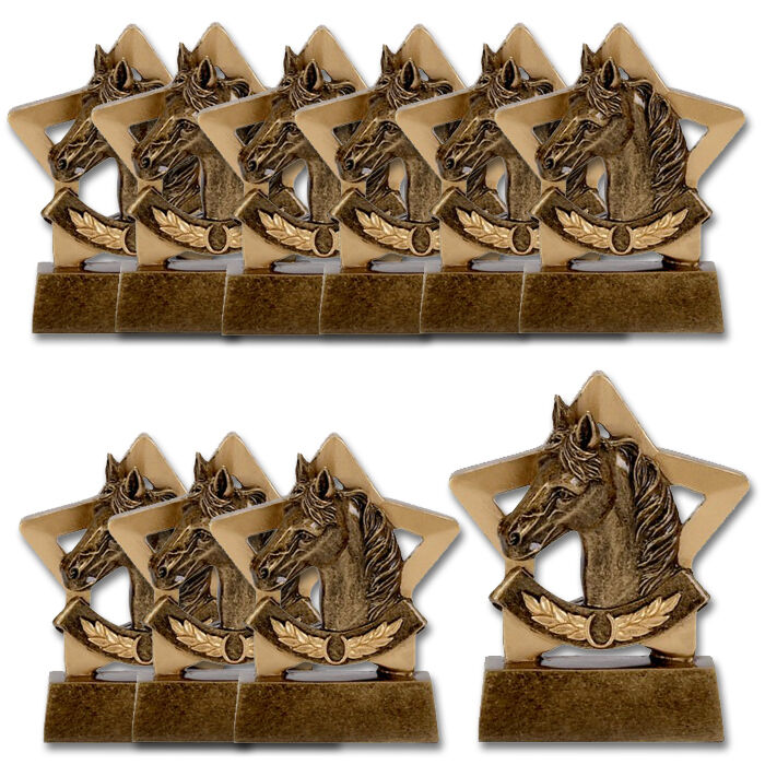 10 x Box of Equestrian Horse Trophies, Cheap Horse Trophy, Pony party trophy