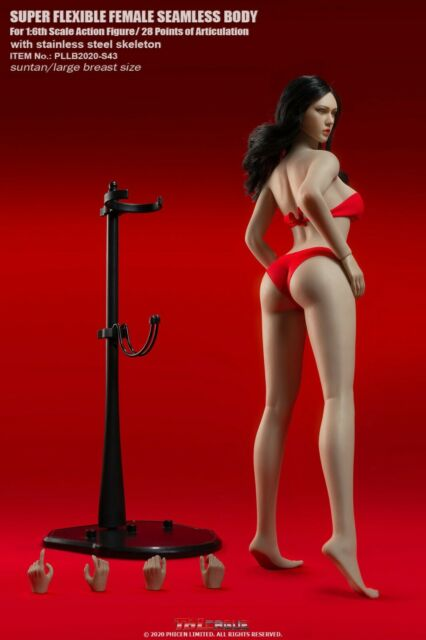 TBLeague PLLB2020-S43 1/6 Suntan Seamless Body Super-Flexible Robust Doll