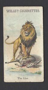 WILLS-ANIMALS-amp-BIRDS-THE-LION