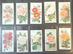 1912-Wills-ROSES-flowers-garden-plants-Tobacco-cards-complete-VG-50-card-set