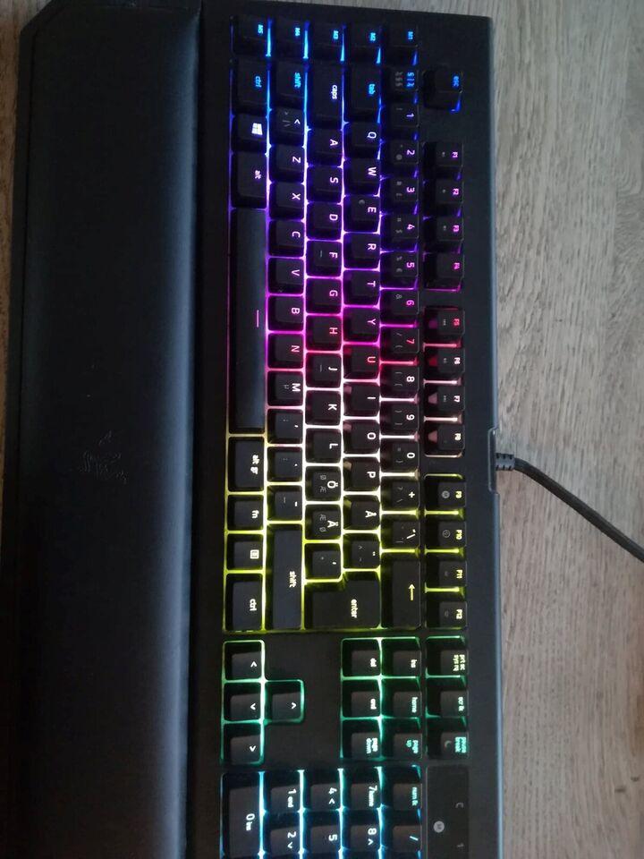 Gaming, Razer, Black Widow Chroma v2