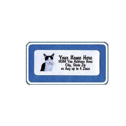 Cat Design Personnalisé Étiquettes D/'adresse 30PCS-Gratuit nous Livraison