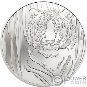 HIDDEN-TIGER-1-2-Oz-Silver-Coin-250-Togrog-Mongolia-2019