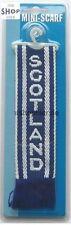 Minischal Scotland mit Saugnapf und Aufhänger Schal 22x5cm für Auto LKW NEU