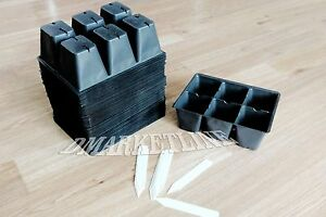 300-Seedling-Seed-Starter-Large-Cells-Inserts-50-TRAYS-NURSERY-10-LABELS