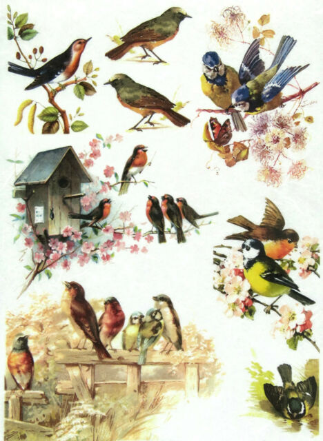 Rice Paper for Decoupage, Scrapbook Sheet, Craft Vintage Birds