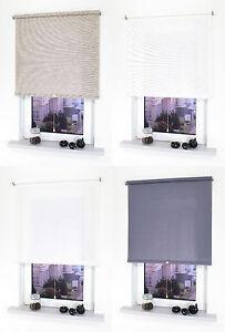Mittelzugrollo Fenster Sichtschutz Rollo Dekor Springrollo