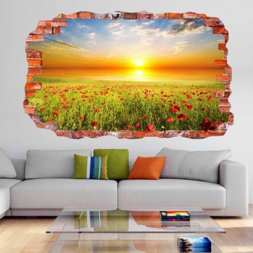 Flowers Green Field Sunset Sky 3D Wall Art Stickers Mural Decal Home Decor DH69