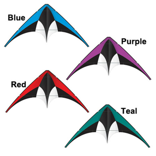 60 inch DC Sport Kite PURPLE Includes Line and Handles