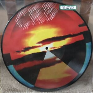 """Details about CHRIS ROBINSON BROTHERHOOD 10"""" Vinyl Picture Disc 2019 RSD  Dice Game Let It Fall"""