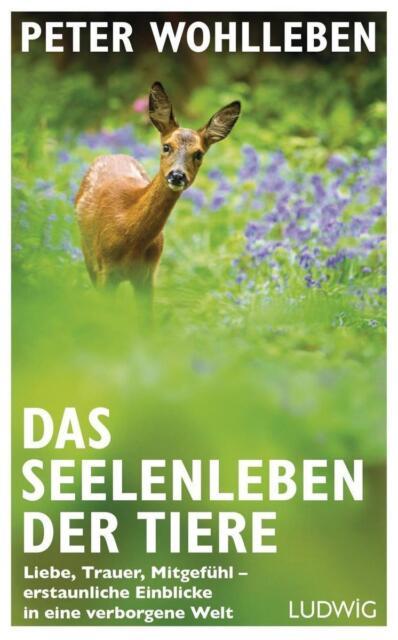 Das Seelenleben der Tiere von Peter Wohlleben (2016, Gebundene Ausgabe)