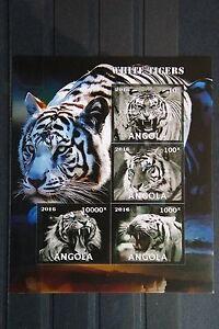 Tiger-11-tigre-Katzen-cats-Panthera-tigris-Tiere-animals-Fauna-postfrisch-MNH