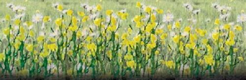 """Daisies 1//2/"""" 24//pk HO Scale JTT Scenery Products 95543"""