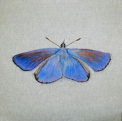 COMMON BLUE TEX EX ORIGINAL BRITISH BUTTERFLIES CUSHION PANEL BUTTERFLY LINEN