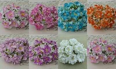 PACK 10  BEAUTIFUL GARDENIA FLOWERS FOR CARDS AND CRAFTS 8 COLOURS TO CHOOSE