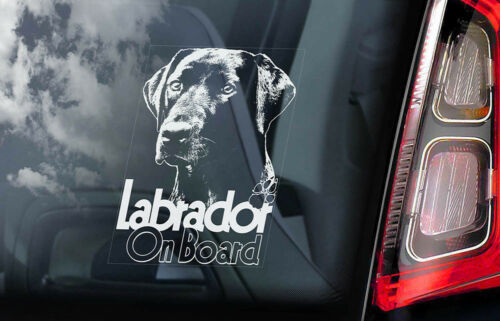 Black Retriever Dog Decal Sign Gift V09 Car Window Sticker Labrador on Board