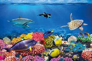 unterwasser korallenriff fototapete aquarium fische meer wandbild xxl poster 4260388440560 ebay. Black Bedroom Furniture Sets. Home Design Ideas