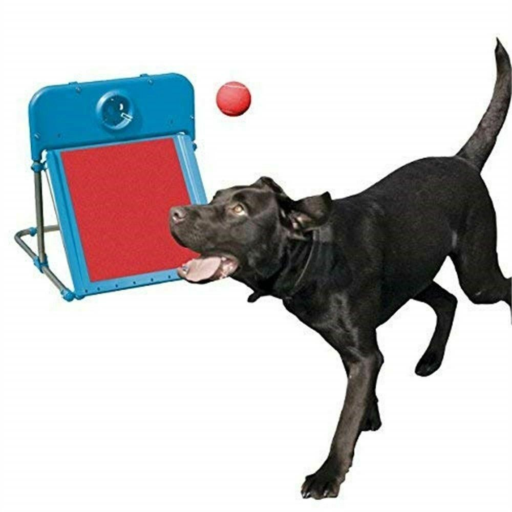 Easy Assemble Dog Pet Agility Flyball With Tennis Ball Fun Exercise.