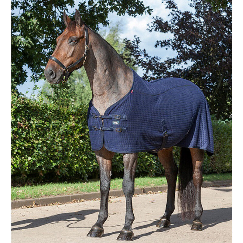 % SONDERAKTION  LeMieux THERMO-COOL THERMO-COOL THERMO-COOL Rug LUXUS Abschwitzdecke Transportdecke  -NH f5d8c0